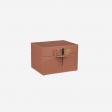 Lacquer box B earth